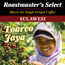 coffee-from-sulawesi THUMBNAIL