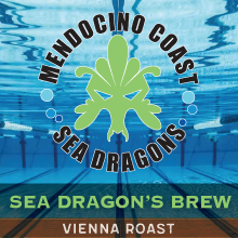 mendocino_sea_dragons_swim_team THUMBNAIL