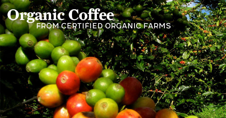 Organic Certified Coffee