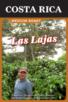 costa-rican-coffee-beans