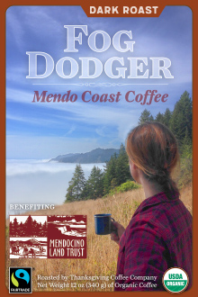 Fog Dodger - Dark Roast_THUMBNAIL