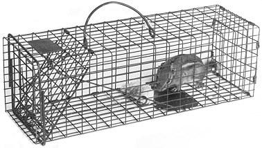 "Chipmunk / Rat Galvanized Metal Live Animal Traps with 1/2"" x 1"" Wire Grid LARGE"