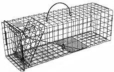 Squirrel / Muskrat / Mink / Opossum Galvanized Metal Live Animal Trap with 1 x 1 Wire Grid