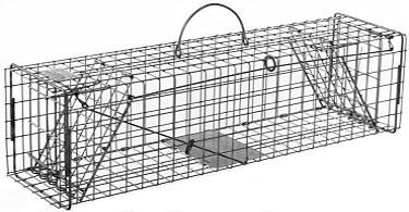 Squirrel / Muskrat / Mink Galvanized Metal Live Animal Trap with 1 x 1 Wire Grid & Two Trap Doors