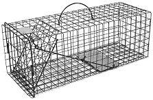 Skunk - Galvanized Metal Live Animal Trap with 1 x 1 Wire Grid THUMBNAIL