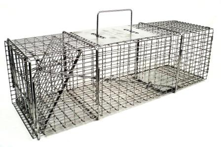 "Professional Skunk/Opossum/Prairie Dog Galvanized Metal Live Animal Trap with 1/2"" x 1"" Wire Grid THUMBNAIL"