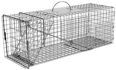 Feral or Domestic Cat / Rabbit Galvanized Metal Live Animal Trap with 1 x 1 Grid THUMBNAIL