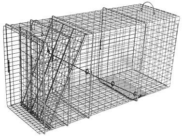 Bobcat / Coyote/ Small Dog / Fox Galvanized Metal Live Animal Trap with 1 x 2 Grid THUMBNAIL