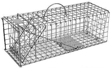 Squirrel / Muskrat / Opossum / Mink Galvanized Metal Collapsible Live Animal Trap w/ 1 x 1 Wire Grid THUMBNAIL