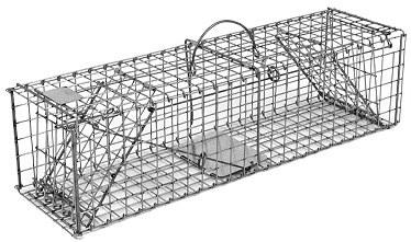 Squirrel / Muskrat /Mink Galvanized Metal Collapsible Double Door Live Animal Trap w/ 1x1 Wire Grid