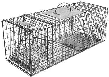 Feral or Domestic Cat / Rabbit Galvanized Metal Collapsible Live Animal Trap with 1 x 1 Grid THUMBNAIL