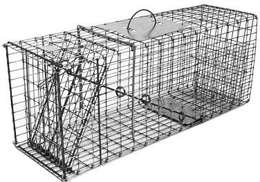 Large Raccoon / Large Woodchuck Galvanized Metal Collapsible Live Animal Trap with 1 x 2 Grid THUMBNAIL
