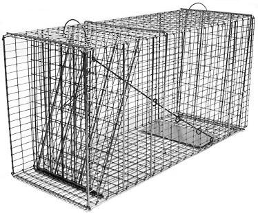 Bobcat / Coyote/ Small Feral Dog Galvanized Metal Collapsible Live Animal Trap with 1 x 2 Grid THUMBNAIL
