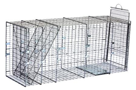 Large Feral Dog Galvanized Metal Collapsible Live Animal Trap with 1 x 2 Grid_LARGE
