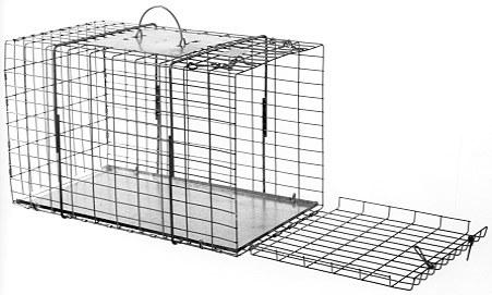 "End Opening Animal Cage - Raccoon/Cat Size - (20""L x 11""W x 12""H) THUMBNAIL"