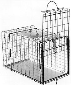 "Animal Transfer Cage - Raccoon/Cat Size - (20""L x 11""W x 12""H)"