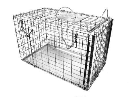 "Animal Transfer Cage with Top & Sliding End Doors - Rabbit/Opossum Size - (16""L x 9""W x 10""H)"