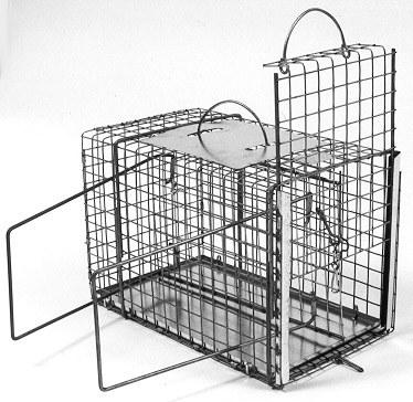 "Animal Squeeze Cage - Large Cat/Raccoon Size - (16""L x 9""W x 10""H)"