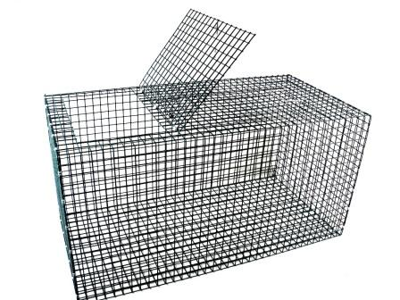 "Coated Rigid Fish Live Box for Salt Water - Plastic Coated Galvanized Steel Mesh (38"" x 18"" x 18"")"