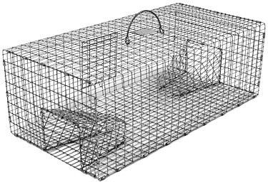 "Double Door Rigid Sparrow Live Bird Trap (24"" x 12"" x 8"") THUMBNAIL"