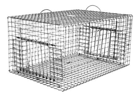 "Double Door Collapsible Pigeon Live Bird Trap (24"" x 16"" x 12"") Folds Flat"