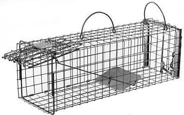 Squirrel / Muskrat Galvanized Metal Live Transfer Animal Trap with 1 x 1 Wire Grid LARGE