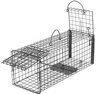 Skunk - Galvanized Metal Transfer Live Animal Transfer Trap with 1 x 1 Wire Grid THUMBNAIL