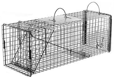 Raccoon / Rabbit/ Feral Cat Galvanized Metal Live Transfer Trap with 1 x 2 Grid LARGE