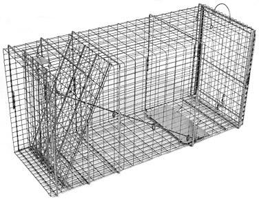 Bobcat / Coyote/ Small Feral Dog Galvanized Metal Live Transfer Animal Trap with 1 x 2 Grid LARGE