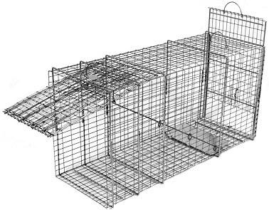 Bobcat / Coyote/ Small Feral Dog Galvanized Metal Live Transfer Animal Trap with 1 x 2 Grid THUMBNAIL