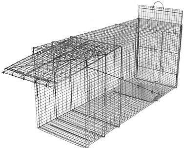 Large Feral Dog Galvanized Metal Live Transfer Animal Trap with 1 x 2 Grid THUMBNAIL