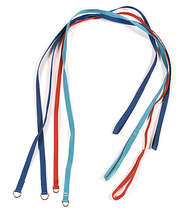 "Bulk Flat Poly Animal Leashes - 1/2"" x 50"" (Sold in Lots of 25) LARGE"