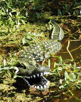 "Aquascape 34"" Floating Alligator Decoy for Water Gardens & Pond Predator Control THUMBNAIL"