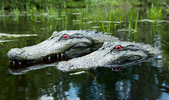 "22"" & 28"" Alligator Head Decoy Kit with Reflective Eyes For Canada Geese & Blue Heron Control"