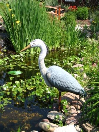 Aquascape Adult Male Blue Heron Decoy For Water Garden & Pond Predator Control