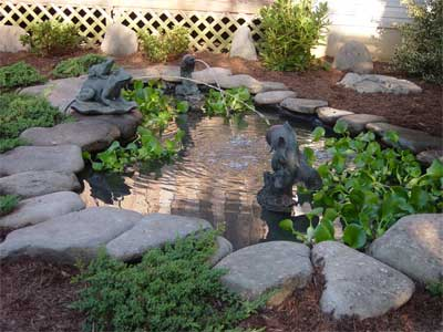 completed pond