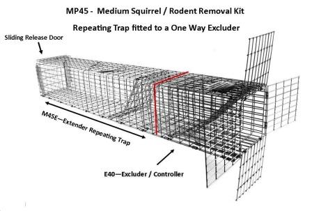 "Professional - Medium Sized Squirrel / Rodent Removal Kit (30"" x 4.5"" x 4.5"")"
