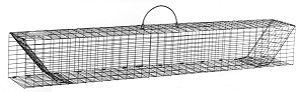 "Multiple Catch Animal Trap with Two Trap Doors - Large Rodent Size (36"" x 5"" x 5"") THUMBNAIL"
