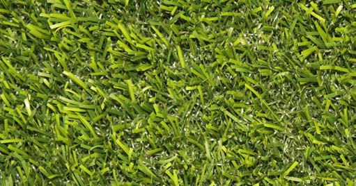 "15' Wide Putting Green Golf Fringe & Synthetic Lawn Turf - 1 3/4"" Bluegrass Style (901)"