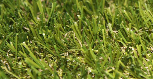 "15' Wide Putting Green Golf Fringe & Synthetic Lawn Turf - 1 1/2"" Bluegrass Style (941)"