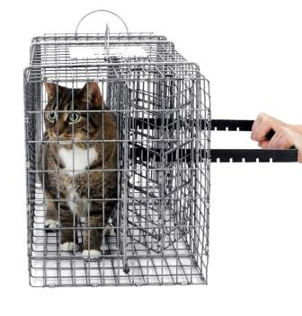 "Restraint Module for Medium Sized Animals - (30"" x 12"" x 14"") THUMBNAIL"
