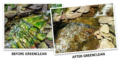BioSafe Systems GreenClean Organic Algae Control for Water Garden, Stream, & Pond Use MAIN