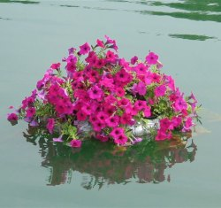25 Inch Floating Rock Flower Beds for Ponds, Water Gardens, & Swimming Pools