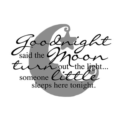 Light Box Insert  - Goodnight said the moon..._LARGE