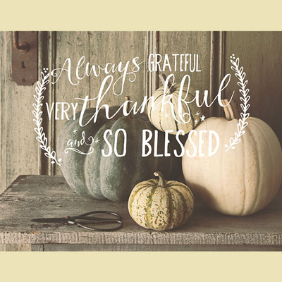 Light Box Insert - Pumpkins Always Grateful