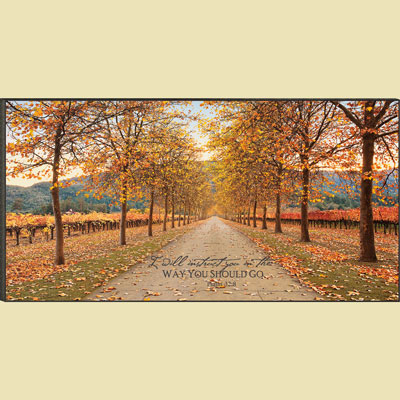 Christian Wall Art - Napa Lane - Psalm 32:8