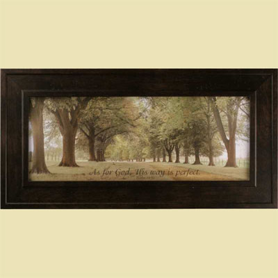 Avenue of Trees - Psalm 18:30