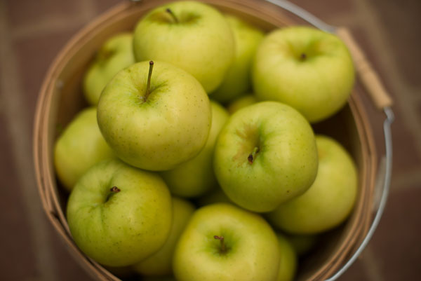 6 Month Subscription - 18 to 22 apples per box SWATCH