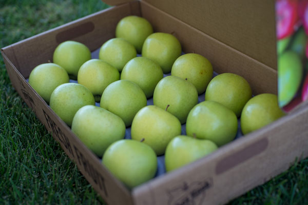 Golden Delicious Mixed Box THUMBNAIL