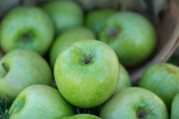 Granny Smith_SWATCH